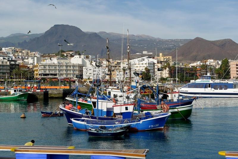 Vissersbootjes in de haven