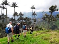 Djoser groep loopt in de Cocora Vallei Colombia