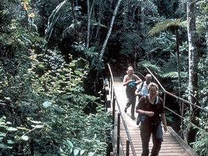 Ranomafana National Park – wandelen
