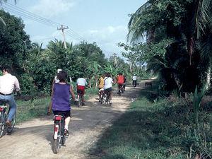 Commewijne - fietstocht