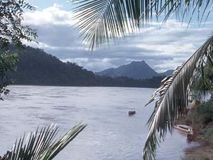 Mekong - natuur