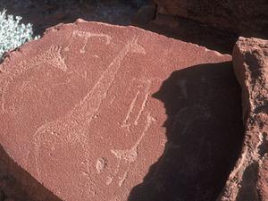 Twijfelfontijn - rotsgravures