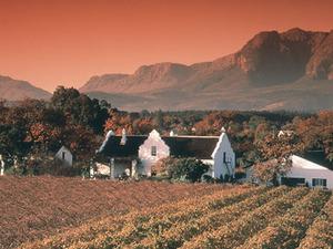 Wijnboederij in Paarl/Cederberg