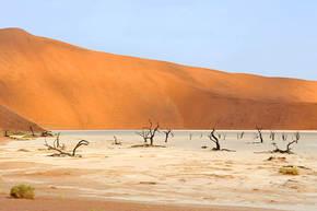 Rondreis Namibië, 20 dagen lodge/hotelreis