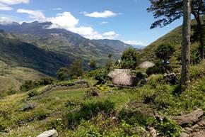 Rondreis Sulawesi & Papoea, 21 dagen