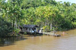 Rondreis Brazilië Amazone, 21 dagen