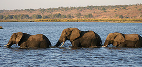Namibië, Botswana & Victoriawatervallen, 22 dagen