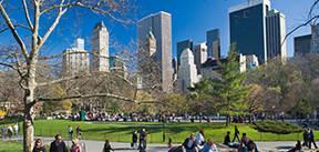 Stedenreis New York, 7 dagen