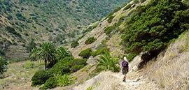 Wandelvakantie Tenerife & La Gomera, 8 dagen