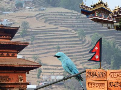 Nepal 20 april tot 7 mei