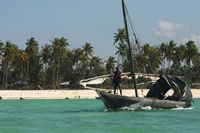 Rondreis Kenia, Tanzania & Zanzibar kamperen, 21 dagen