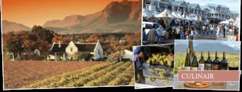 Wijnreis Zuid-Afrika
