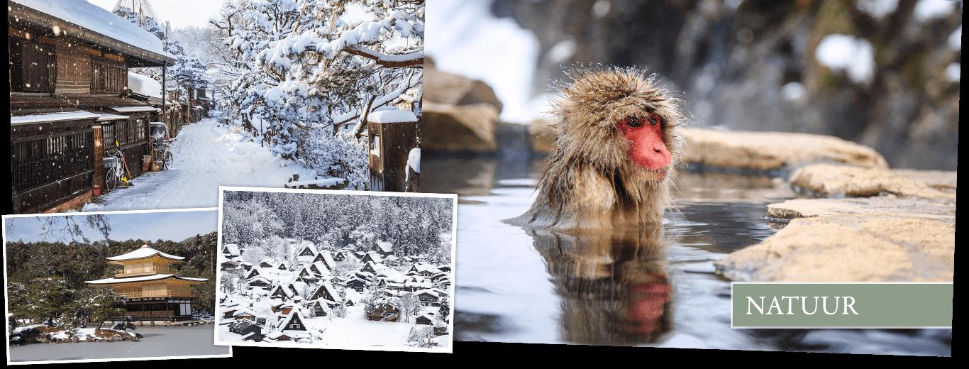 Winterreis Japan