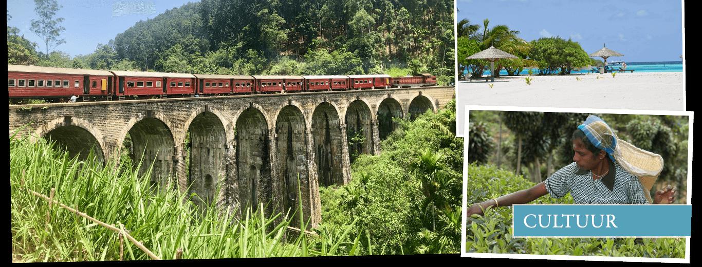 Cultuurreis Sri Lanka