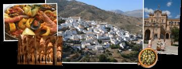 Overzicht Spanje rondreizen van Djoser