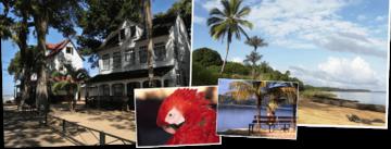 Suriname & Guyana