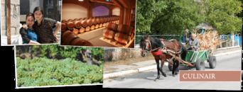 Wijnreis Moldavië