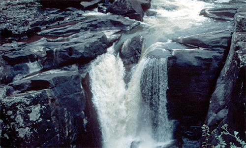 Ranomafana National Park – waterval