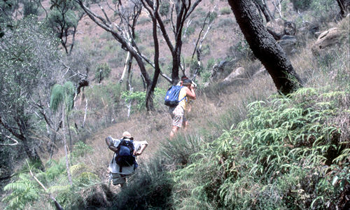 Isalo National Park – trekking
